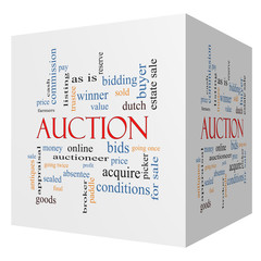 Auction 3D cube Word Cloud Concept