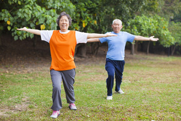 Active senior couple in the park doing gymnastics