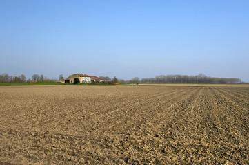 aratura campi
