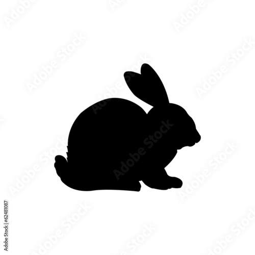 Form contour rabbit, bunny vector poster
