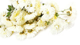 Bouquet of white flowers, chrysanthemums.