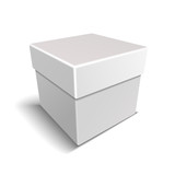 White Blank Paper Close Gift Box on Light Background