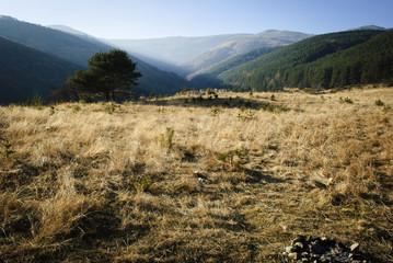 Landscape form Bulgaria - Vitosha, Zheleznitsa
