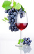 Glass of red wine and bunch of grapes with leaves isolated on a