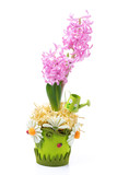 Easter composition with pink hyacinth