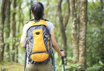 woman hiker walking in forest