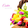 Easter setting with colorful tulips