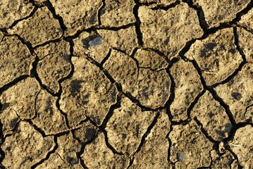 cracked earth texture background