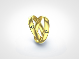 gay marriage female ring