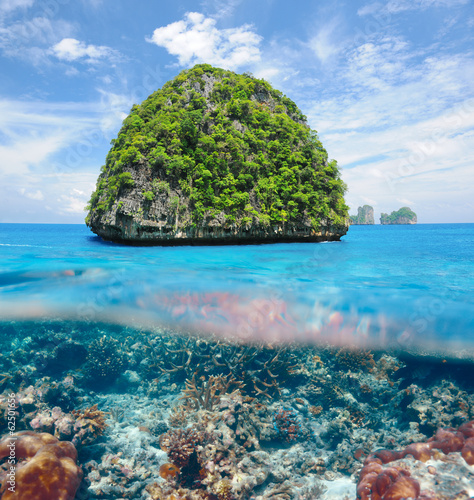 Uninhabited island with coral reef underwater view