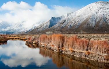 Erosion Control on a Sierra Nevada Riverbank