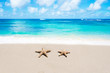 canvas print picture - Starfishes on the sandy beach