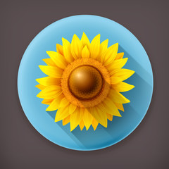 Sunflower long shadow vector icon