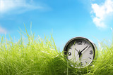 alarm clock on green grass