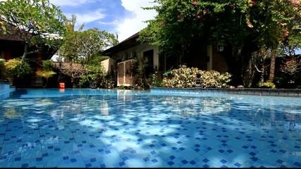 Pool inside a garden