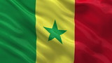 Flag of Senegal waving in the wind - seamless loop
