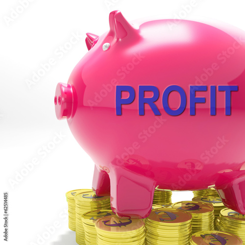 Profit Piggy Bank Means Revenue Return And Surplus