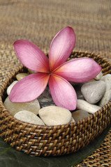 flower and stones a wicker basket on burlap texture