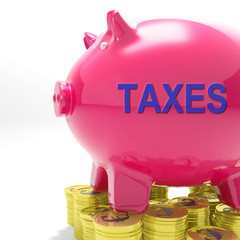 Taxes Piggy Bank Means Taxed Income And Tax Rate
