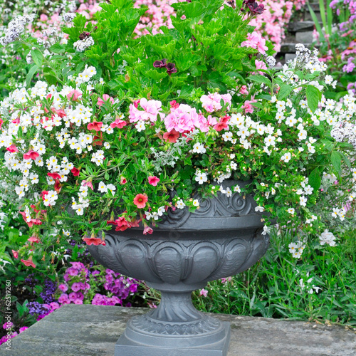 beautiful flower bed in vase