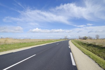 Road in the Camargue, France.