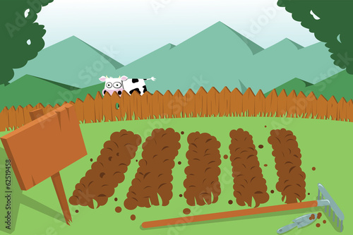 vegetable garden and cow