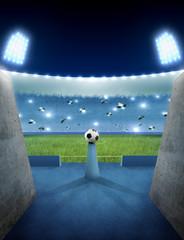 Night stadium entrance