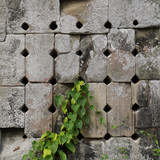 Stone wall with holes, green plant, Phnom Bok, Angkor, Cambodia