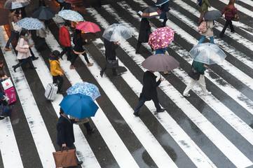 雨の中で傘を差して横断歩道を渡る人々