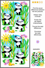 Find the differences visual puzzle - panda bears