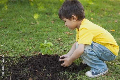 Young boy planting a young plant in park