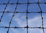 Black barbed wire, blue sky