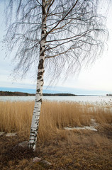 Finland, early spring