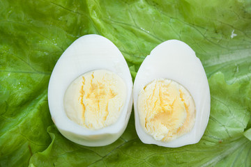 Boiled egg sliced in half on lettuce closeup
