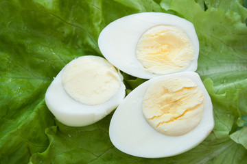 Boiled egg sliced in half on lettuce