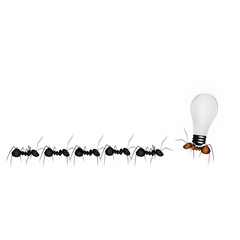 The team ants, business personnel and ideological leader