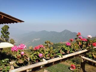 Viewpoint terrace lookout mountainous scenery