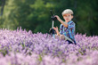 Cute little boy in lavender field