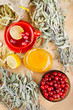 red cranberries, jar with honey, fruit tea cup, healing herbs an