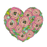 Pink ranunculus-rose flowers heart