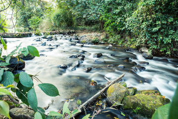 Stream in the forest of Thailand