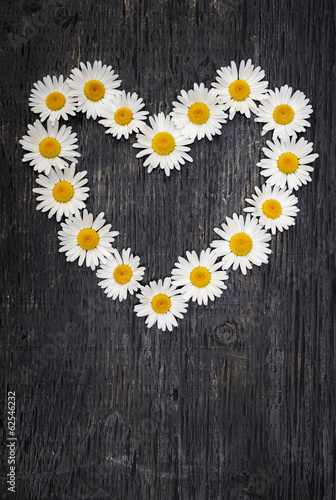 Daisy heart on dark wood