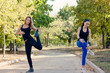 Two friends exercising together in a park