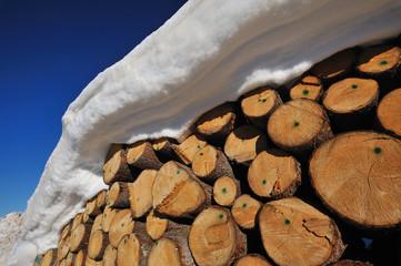 Dolomiti, Trentino  Alto Adige, neve e legno di abete