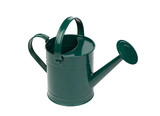 Green watering can