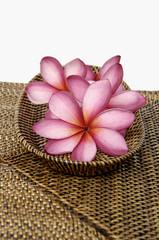 frangipani flower in wicker basket on burlap texture