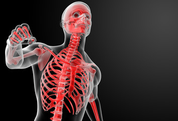 Running skeleton by X-rays in red - front view