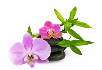 Orchids, stones and bamboo :)