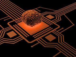 Processor and human brain .