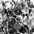 Obrazy na płótnie, fototapety, zdjęcia, fotoobrazy drukowane : Rock music background